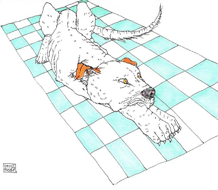 canidae mosaico